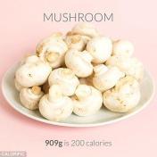 calorie-counting-app-calorific