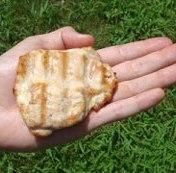 chicken 1 palm