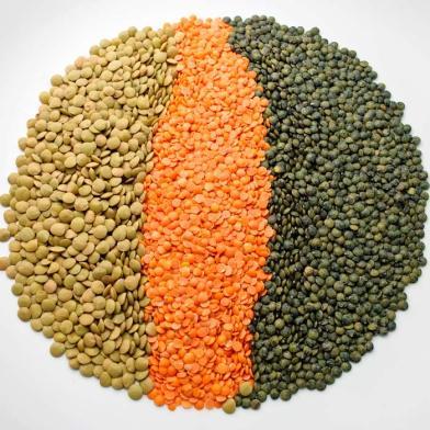 lentiles